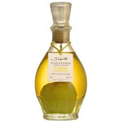 Carafe pomme captive au Calvados Dupont 70 cl 40 %