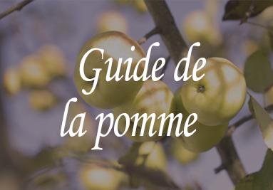 Guide de la pomme